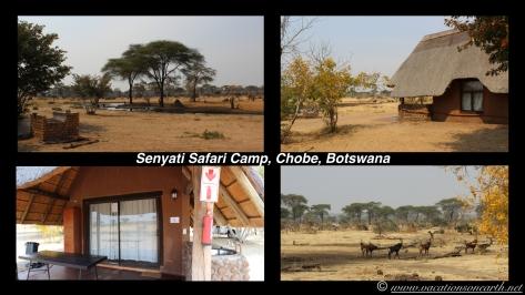 Namibia:Botswana Aug 2013 - Senyati Safari Camp, Chobe, Botswana.004