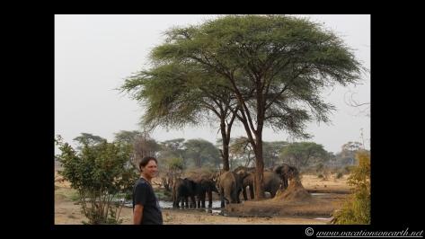 Namibia:Botswana Aug 2013 - Senyati Safari Camp, Chobe, Botswana.010