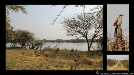Namibia:Botswana Aug 2013 - Thebe Safari Lodge, Kasane, Botswana 2013.003