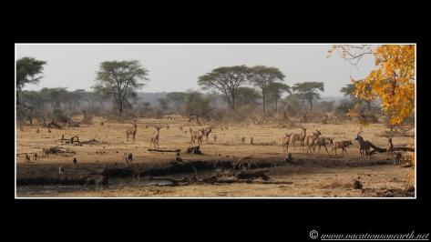 Namibia 2013 - Senyati Safari Camp, Botswana - 15 Aug 2013.001
