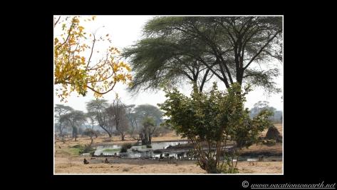 Namibia 2013 - Senyati Safari Camp, Botswana - 15 Aug 2013.009