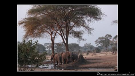 Namibia 2013 - Senyati Safari Camp, Botswana - 15 Aug 2013.022