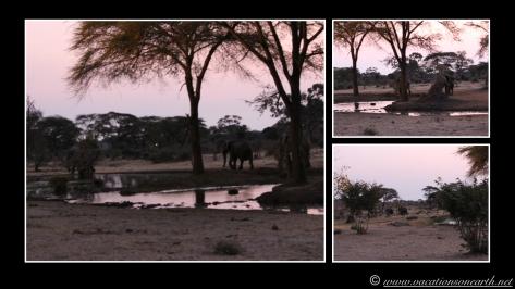 Namibia 2013 - Senyati Safari Camp, Botswana - 16 Aug 2013.001