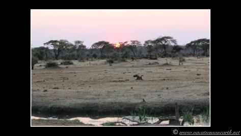 Namibia 2013 - Senyati Safari Camp, Botswana - 16 Aug 2013.003