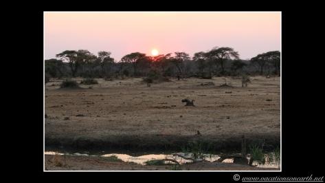 Namibia 2013 - Senyati Safari Camp, Botswana - 16 Aug 2013.006