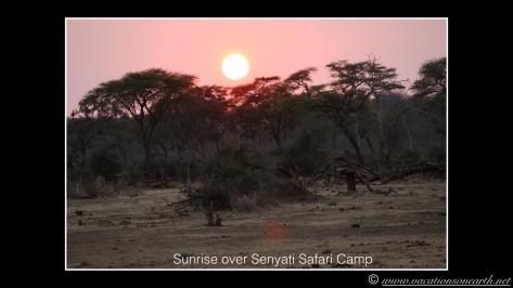 Namibia 2013 - Senyati Safari Camp, Botswana - 16 Aug 2013.007