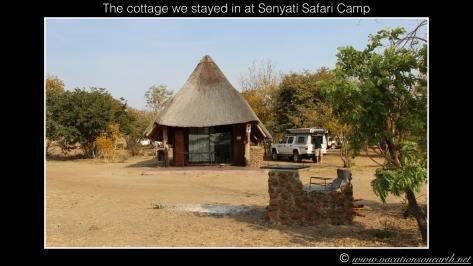 Namibia 2013 - Senyati Safari Camp, Botswana - 16 Aug 2013.015