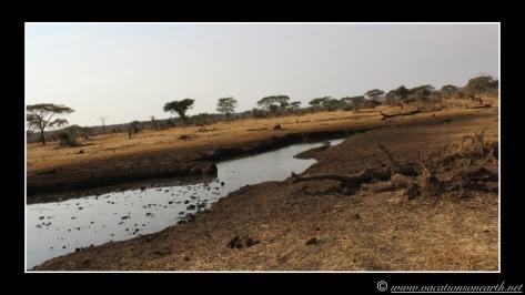 Namibia 2013 - Senyati Safari Camp, Botswana - 16 Aug 2013.017