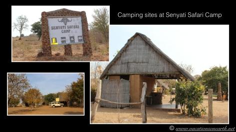 Namibia 2013 - Senyati Safari Camp, Botswana - 16 Aug 2013.019