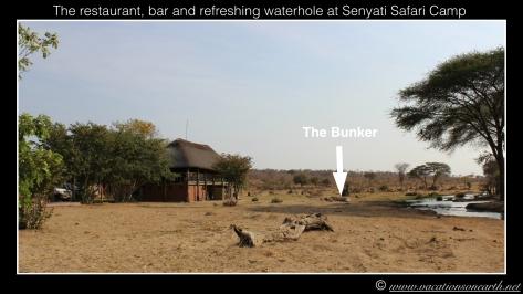 Namibia 2013 - Senyati Safari Camp, Botswana - 16 Aug 2013.021
