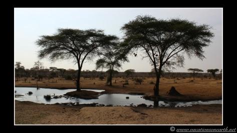 Namibia 2013 - Senyati Safari Camp, Botswana - 16 Aug 2013.022