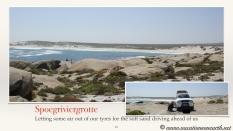 South Africa West Coast - Drive from Houthoop through the Namaqua and Skilpad National Park towards Cape Town.016