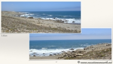 South Africa West Coast - Drive from Houthoop through the Namaqua and Skilpad National Park towards Cape Town.017