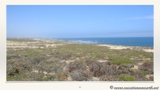 South Africa West Coast - Drive from Houthoop through the Namaqua and Skilpad National Park towards Cape Town.021