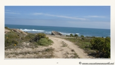 South Africa West Coast - Drive from Houthoop through the Namaqua and Skilpad National Park towards Cape Town.025