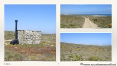 South Africa West Coast - Drive from Houthoop through the Namaqua and Skilpad National Park towards Cape Town.028