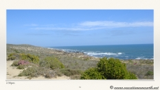 South Africa West Coast - Drive from Houthoop through the Namaqua and Skilpad National Park towards Cape Town.031