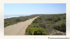 South Africa West Coast - Drive from Houthoop through the Namaqua and Skilpad National Park towards Cape Town.032