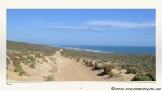 South Africa West Coast - Drive from Houthoop through the Namaqua and Skilpad National Park towards Cape Town.033