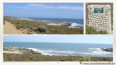South Africa West Coast - Drive from Houthoop through the Namaqua and Skilpad National Park towards Cape Town.034