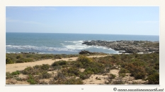 South Africa West Coast - Drive from Houthoop through the Namaqua and Skilpad National Park towards Cape Town.035