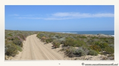 South Africa West Coast - Drive from Houthoop through the Namaqua and Skilpad National Park towards Cape Town.036