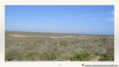 South Africa West Coast - Drive from Houthoop through the Namaqua and Skilpad National Park towards Cape Town.040
