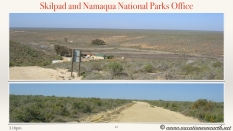 South Africa West Coast - Drive from Houthoop through the Namaqua and Skilpad National Park towards Cape Town.041