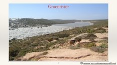 South Africa West Coast - Drive from Houthoop through the Namaqua and Skilpad National Park towards Cape Town.045