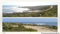 South Africa West Coast - Drive from Houthoop through the Namaqua and Skilpad National Park towards Cape Town.051