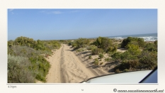 South Africa West Coast - Drive from Houthoop through the Namaqua and Skilpad National Park towards Cape Town.052