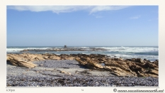 South Africa West Coast - Drive from Houthoop through the Namaqua and Skilpad National Park towards Cape Town.054