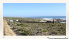South Africa West Coast - Drive from Houthoop through the Namaqua and Skilpad National Park towards Cape Town.057