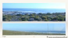 South Africa West Coast - Drive from Houthoop through the Namaqua and Skilpad National Park towards Cape Town.063