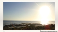 South Africa West Coast - Drive from Houthoop through the Namaqua and Skilpad National Park towards Cape Town.072