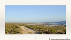 South Africa West Coast - Drive from Houthoop through the Namaqua and Skilpad National Park towards Cape Town.075