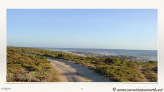 South Africa West Coast - Drive from Houthoop through the Namaqua and Skilpad National Park towards Cape Town.077