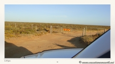 South Africa West Coast - Drive from Houthoop through the Namaqua and Skilpad National Park towards Cape Town.080
