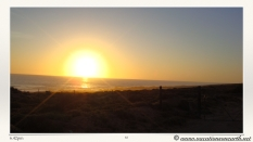 South Africa West Coast - Drive from Houthoop through the Namaqua and Skilpad National Park towards Cape Town.083