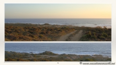 South Africa West Coast - Drive from Houthoop through the Namaqua and Skilpad National Park towards Cape Town.084