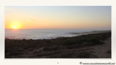 South Africa West Coast - Drive from Houthoop through the Namaqua and Skilpad National Park towards Cape Town.086
