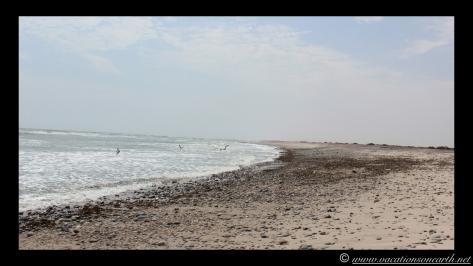 Day 4 - Swakopmund, Skeleton Coast, Bucks Camp in Henties - Namibia 2013 - 23 Sep.023