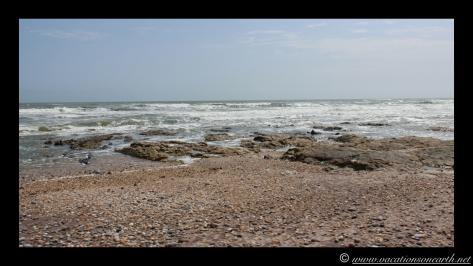 Day 4 - Swakopmund, Skeleton Coast, Bucks Camp in Henties - Namibia 2013 - 23 Sep.033