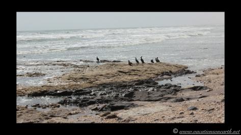 Day 4 - Swakopmund, Skeleton Coast, Bucks Camp in Henties - Namibia 2013 - 23 Sep.034