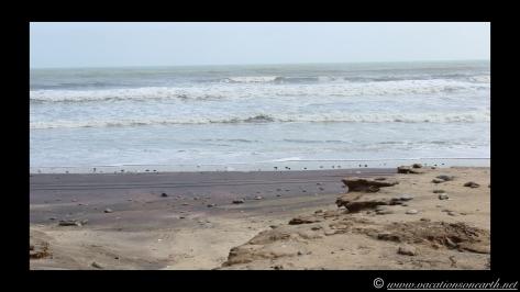 Day 4 - Swakopmund, Skeleton Coast, Bucks Camp in Henties - Namibia 2013 - 23 Sep.039