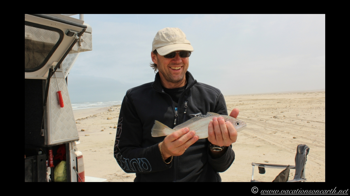 Day 5 - Fishing along the Skeleton Coast north of Henties Bay. Caught 3 kabeljou and 1 galjoen - 24 Sep 2013