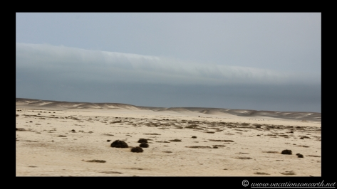 Day 5 - Skeleton Coast, north of Henties - Namibia 2013 - 24 Sep.016