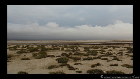 Day 5 - Skeleton Coast, north of Henties - Namibia 2013 - 24 Sep.035