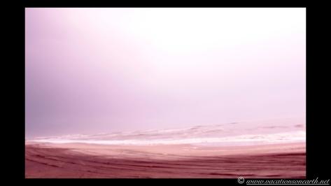 Day 6 - Skeleton Coast - 25 Sep 2013.030