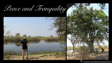 Namibia 2013 - Nambwa 17 Aug.014